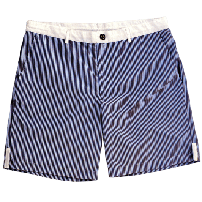 REMY Nantucket Blue Casual Shorts